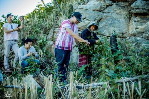 chiang-mai-pgakenyaw-192