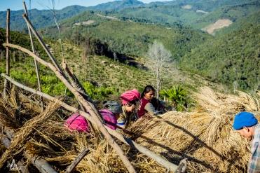 chiang-mai-pgakenyaw-199