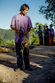 chiang-mai-pgakenyaw-231