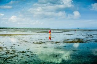 Dry-Tides-Koh-Libong-14