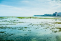 Dry-Tides-Koh-Libong-24