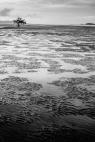 Dry-Tides-Koh-Libong-91