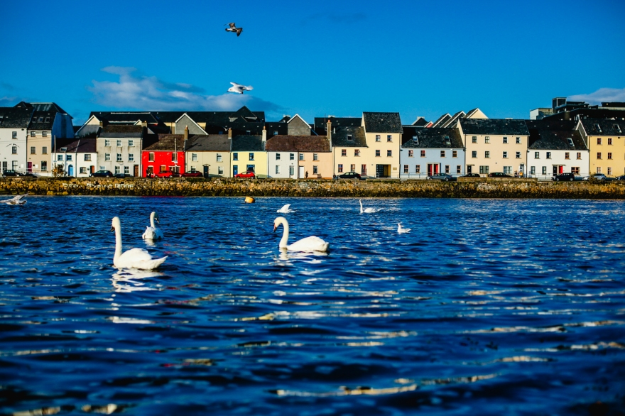 GALWAY-low-2